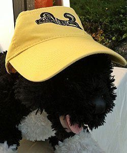 Visor with Spirit Dog Logo
