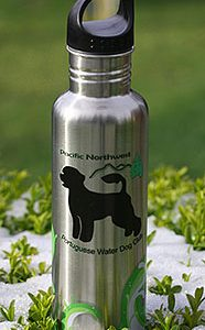 Stainless Beverage Container